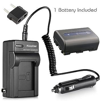 Amazon.com: Nueva batería + cargador para coche y enchufe ...