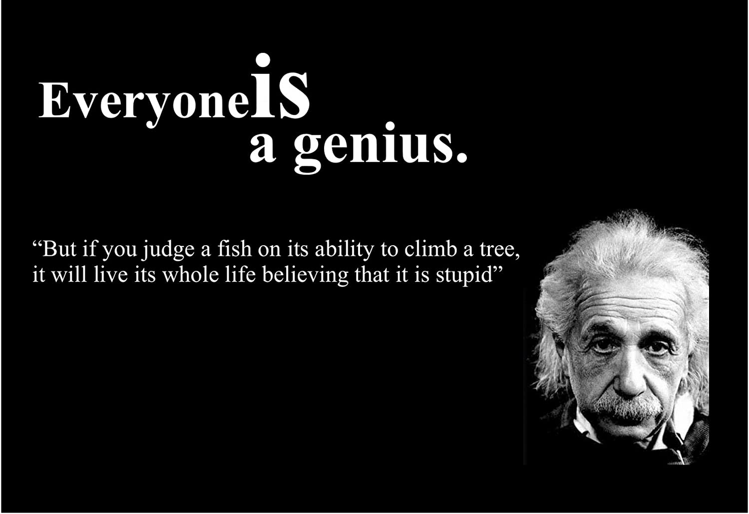 Amazon Com 11x14 Tin Sign Famous Quote Albert Einstein Quote Everyone Is A Genius Posters Prints