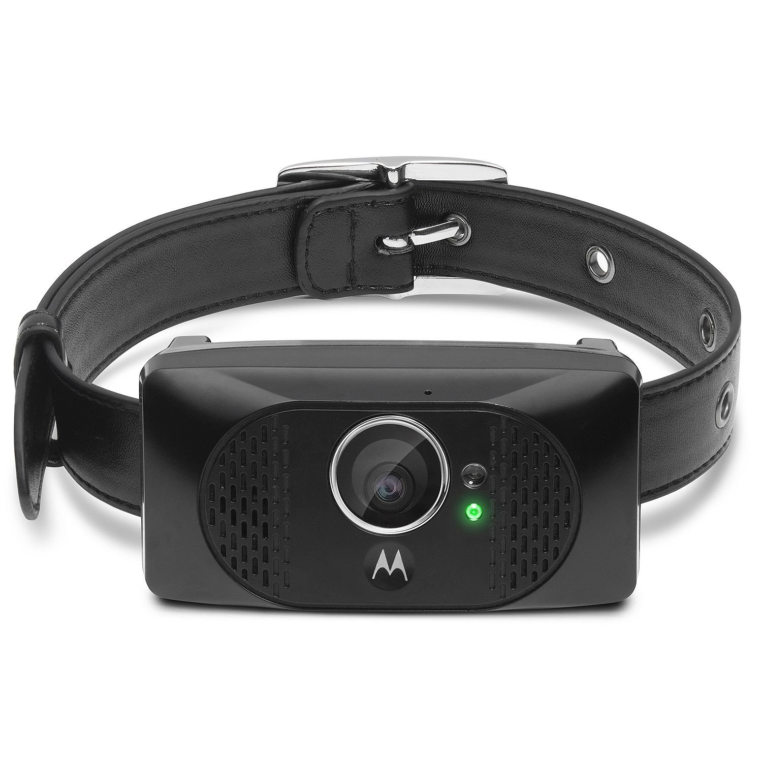 Amazon customer reviews motorola focus66 wi fi hd - Amazon Com Motorola Scout5000 Wearable Hd Pet Camera With Gps Tracking Cell Phones Accessories