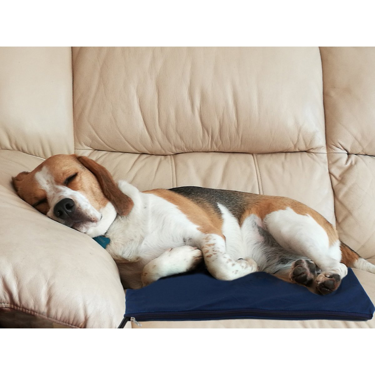 Enjoying Dog Heating Pad, Pet Bed Warmer with Chew Resistant Cord & Overheating protection Heated Pads with LED Indicator for Pets 19.7'' Blue