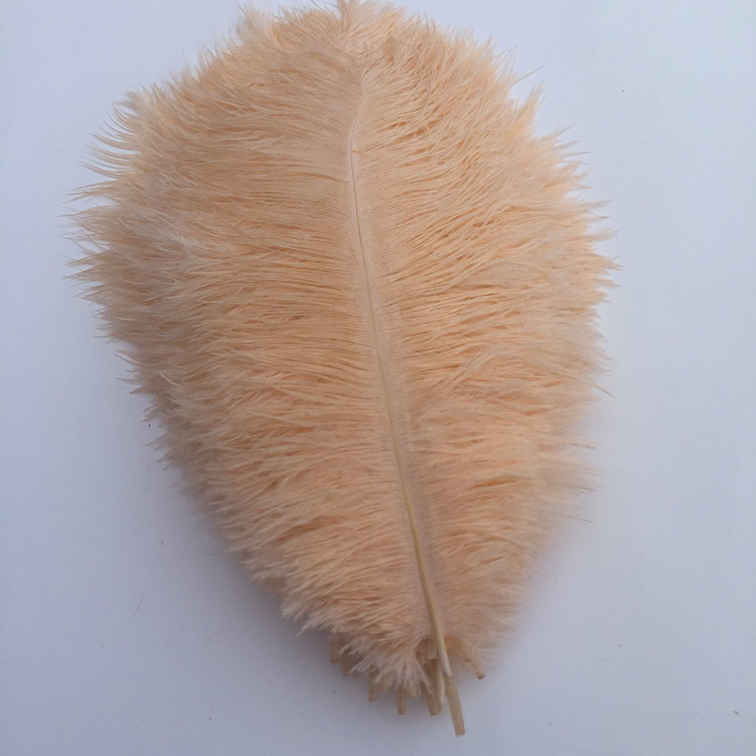 MELADY Pack of 100pcs 23~25inches Natural Ostrich Feathers Perfect for Home Wedding Party Decoration (Champagne)