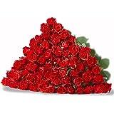 rosenstrau aus 12 roten rosen garten. Black Bedroom Furniture Sets. Home Design Ideas