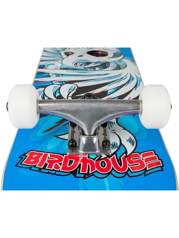 7.75 Inch Blau Birdhouse Skateboard Komplett Hawk Spiral One Size , Blau