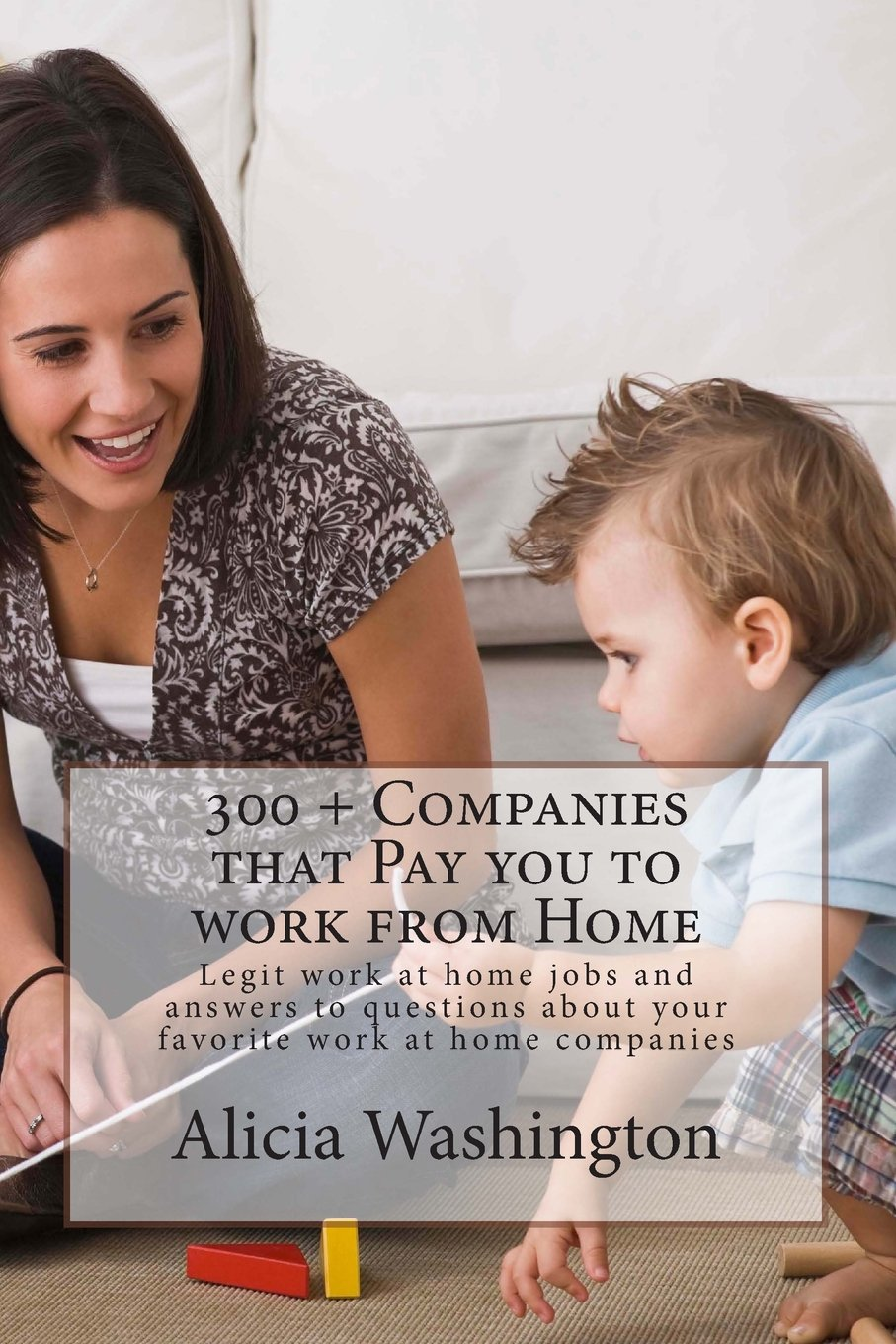 300 Companies that Work Home product image