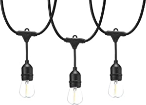 AmazonBasics 48-Foot LED Commercial Grade Outdoor String Lights with 16 Edison Style S14 LED Soft White Bulbs - Black Cord