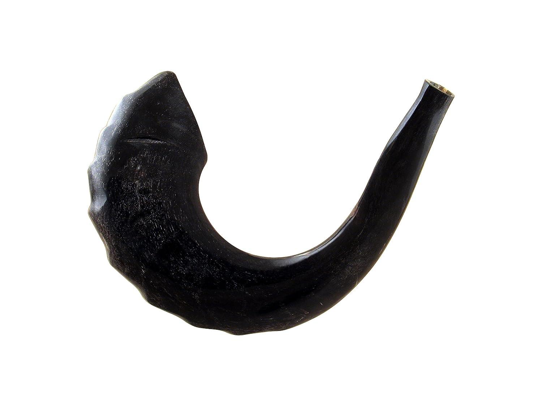 15 Inch Kosher Black Rams Horn Polished Shofar by Peer Hastam
