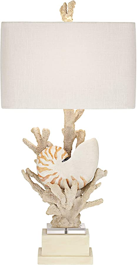 Nautilus Shell And White Coral Table Lamp By Kathy Ireland Amazon Com