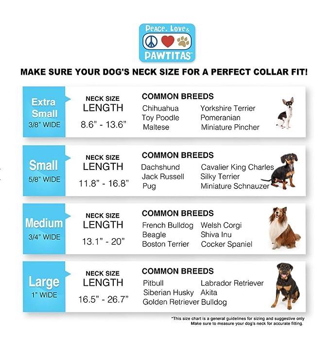 Amazon Com Pawtitas Reflective Dog Collar Small Pink 5 8 Inch