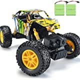 DOUBLE E RC Cars Rechargeable Remote Control Car with 2 Batteries 4WD Off Road Monster Truck Rock Crawler Toys for Boys…