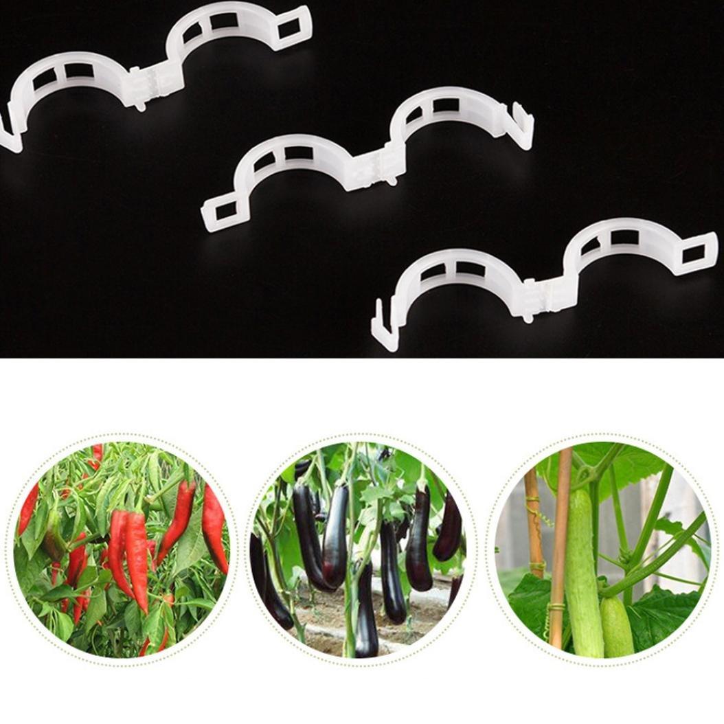 LiPing - Pinzas para Enrejado de jardín, duraderas, Ideales para ...