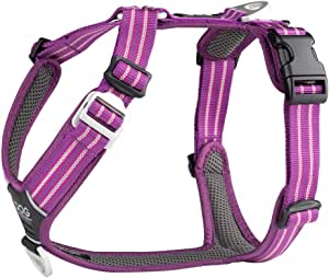 DOG Copenhagen Comfort Walk Air Harness Purple Passion WH-PP Talla ...