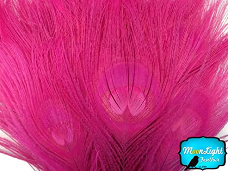 moonlight feather peacock feathers hot pink