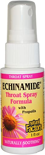 Natural Factors – Echinamide Throat Spray Formula, Soothing Throat Relief, 50 Servings 1 oz