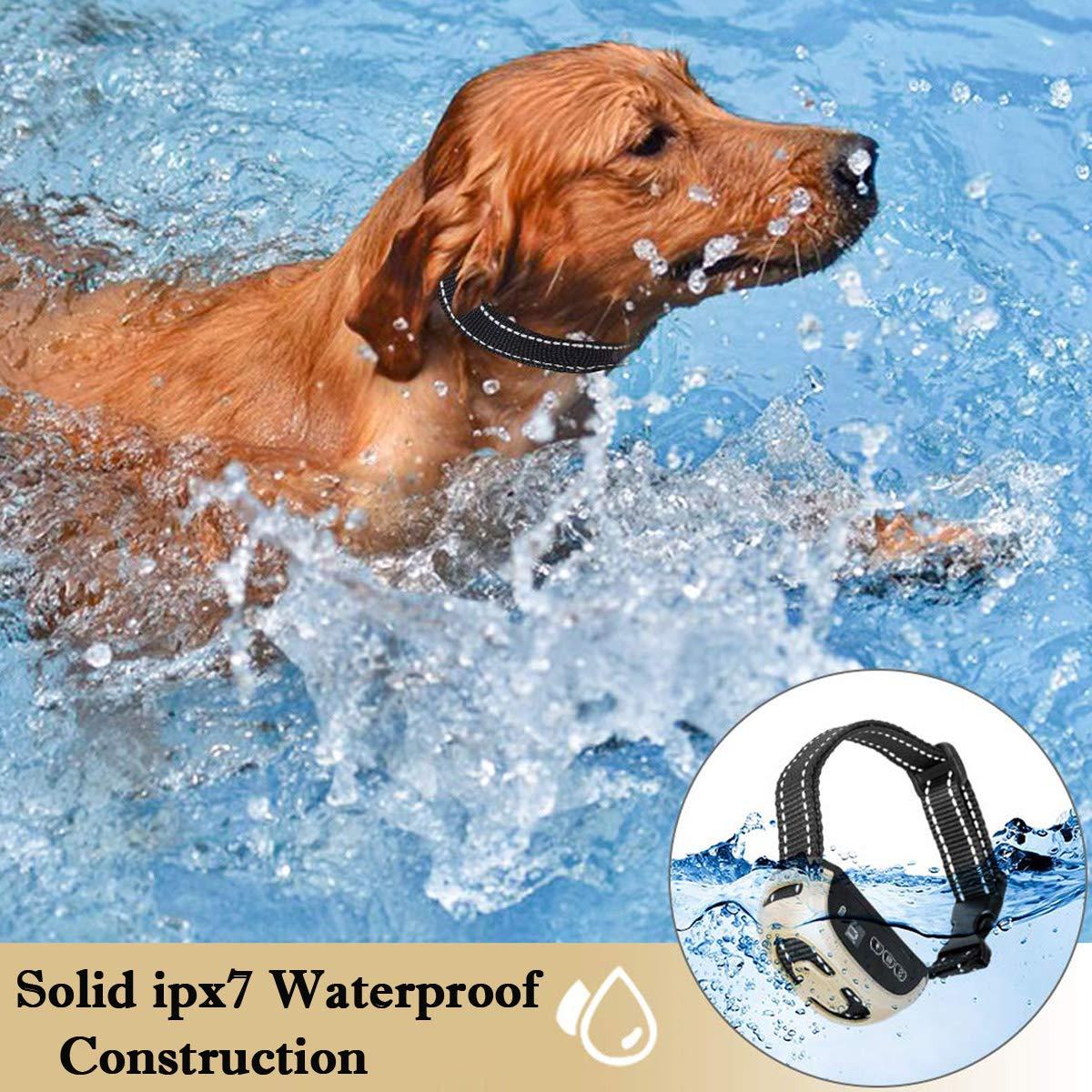 JFDE Collar Antiladridos Recargable para Perros Peque/ños Medianos y Grandes Collar Adiestramiento Recargable para Perros Sonidos y Vibraciones Audibles Chip Avanzado con 1 silbido Gratis
