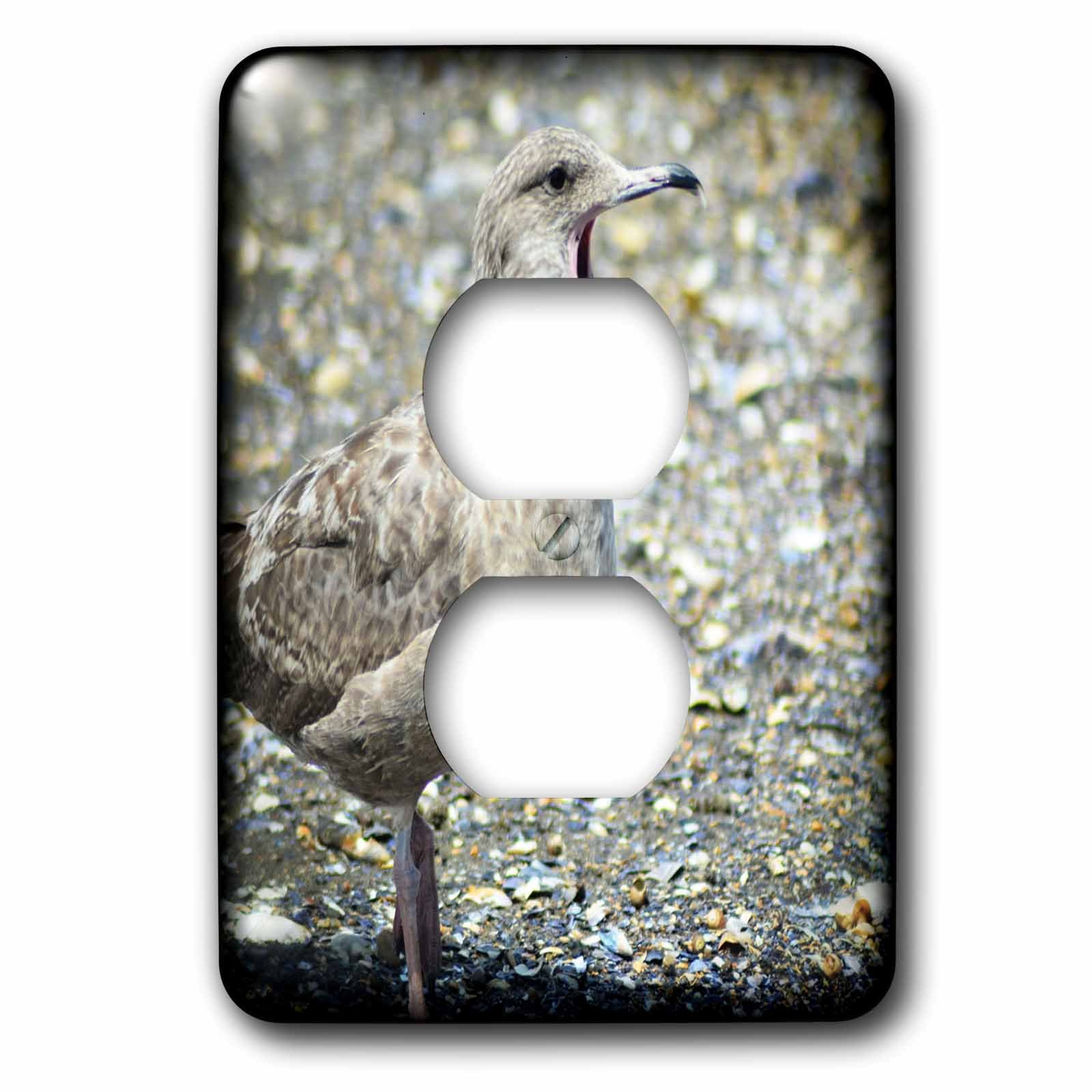 3dRose WhiteOaks Photography and Artwork - Seagulls - Seagull Talking is a seagull that looks like it is talking - Light Switch Covers - 2 plug outlet cover (lsp_265366_6)