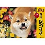 アクティブコーポレーション 2020年 カレンダー 犬 柴犬 壁掛け 森田米雄 だってシバだもの。 ACL-64