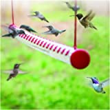 Bob's Best Hummingbird Feeder with Hole, Outside Birds Feeding Transparent Pipe, Horizontal Red Tube Bird Feeder for Indoor O