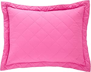 BrylaneHome Reversible Quilted Sham - King, Fuchsia Green Apple
