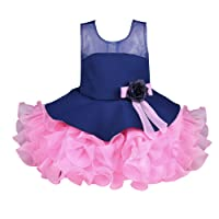 Wish Karo Girl's Net Frock Dress