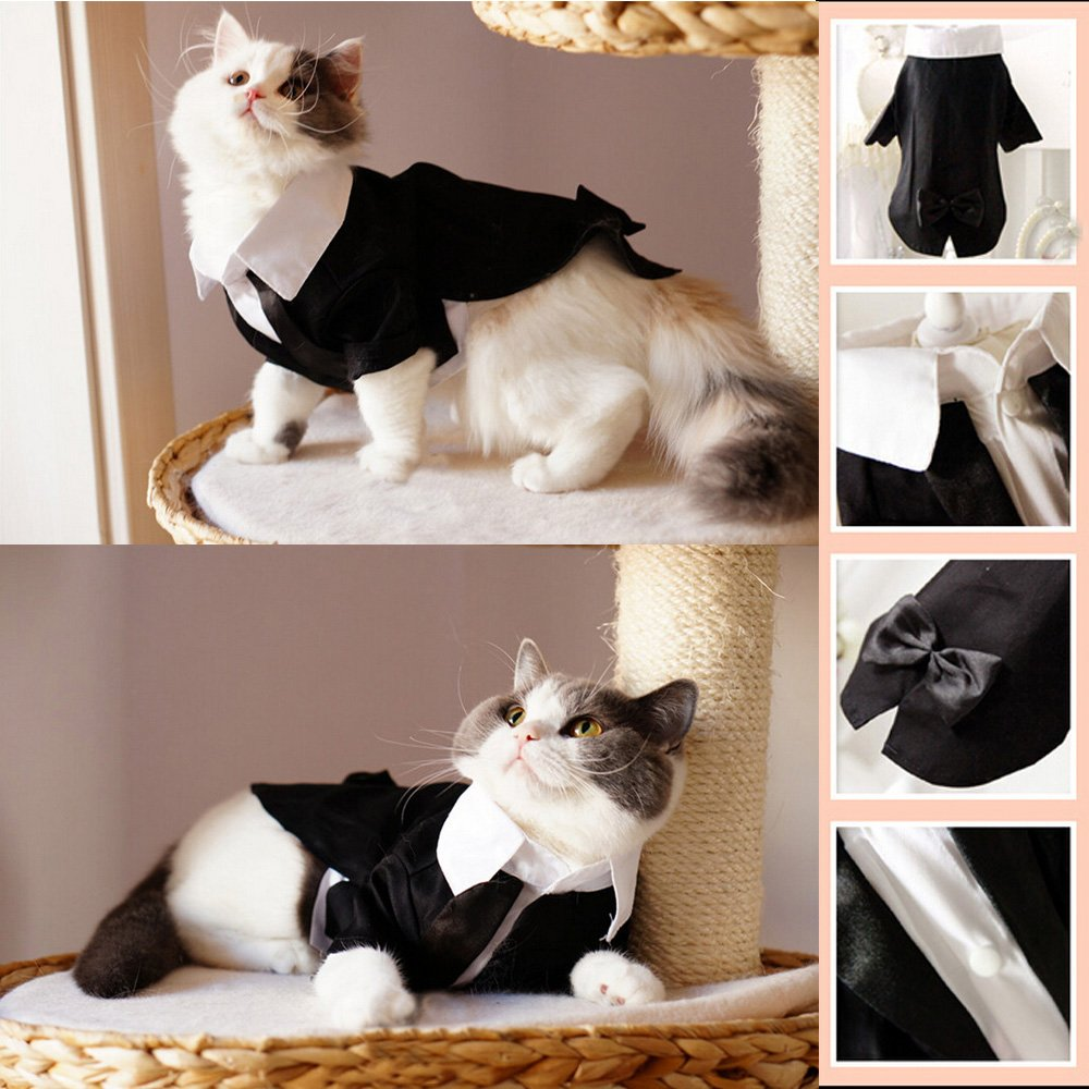 i'Pet® Handsome Prince Cat Bridegroom Wedding Tuxedo Faux Twinset Design Small Boy Dog Formal Attire Doggy Party Wear Puppy Birthday Outfit Doggie Photo Apparel with Buttons Holiday Fabric Clothes Halloween Classics Collection Costume (Black Tuxedo, X-Sm