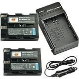 DSTE® アクセサリーキット Pentax D-LI50 NP-400 SLB-1674 BP-21 互換 カメラ バッテリー 2個+充電器キット 対応機種 K10 K10D K20 K20D