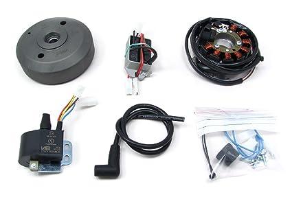 Marvelous Amazon Com Powerdynamo Vape Ignition Dc System Stator Ossa Wiring 101 Kniepimsautoservicenl