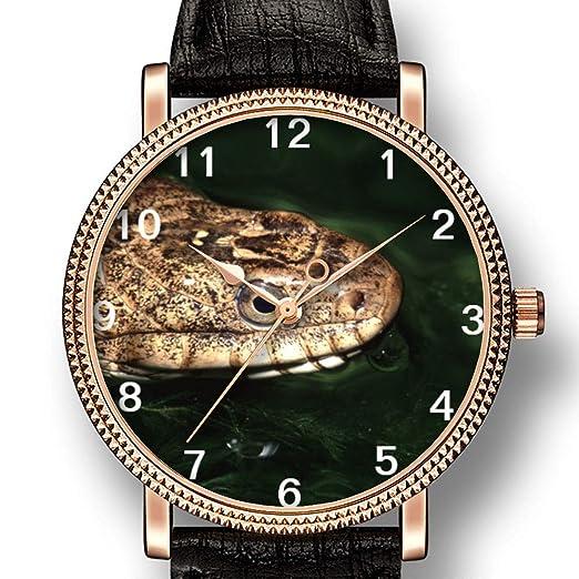 Personality Art Reloj de Cuarzo para Hombre, Estilo Casual, con Efecto de Serpiente acuática y Reflejos: Amazon.es: Relojes