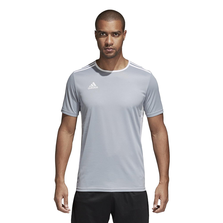 Adidas エントラーダ ジャージー メンズ サッカー 18 B0721VWDFR Large|ライトグレー/ホワイト ライトグレー/ホワイト Large