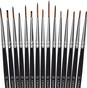 12 synthetic brushes instruction for use and care