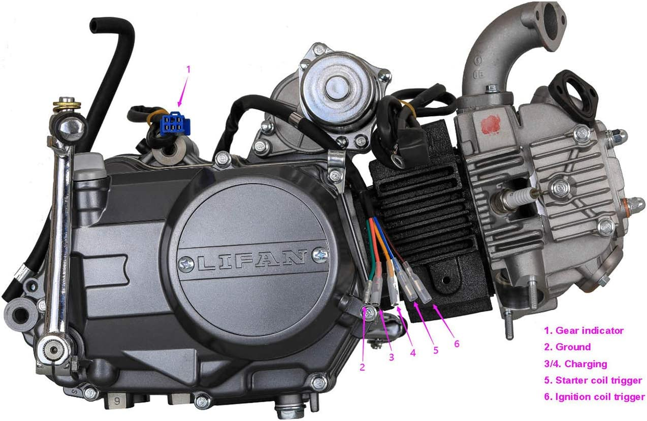 TDPRO Lifan 125cc 4-Stroke W//o Reverse Semi-Auto Single-Cylinder Air-Cooled Electric-Start Motor Engine for XR50 CRF50 XR CRF 50 70 SDG SSR 110 CT70 ST70 Dirt Pit Bike Motorcycle