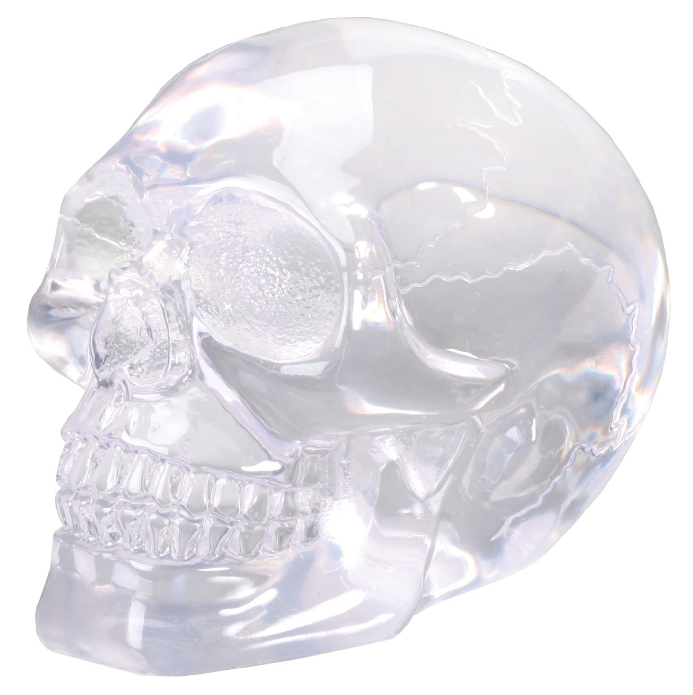 Small Clear Translucent Skull Collectible Figurine