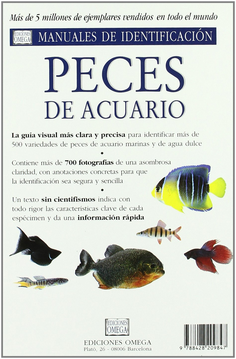 Peces de Acuario: Guia Visual de mas de 500 Variedades de Peces d e ..: D. MILLS: 9788428209847: Amazon.com: Books