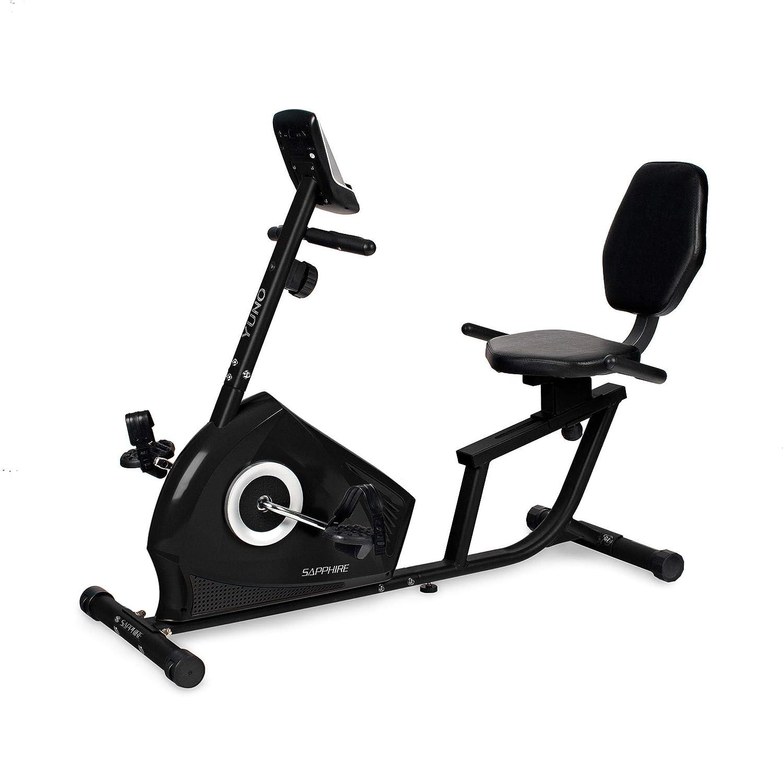 Xylo-Sapphire Liegeheimtrainer Sitzheimtrainer Heimtrainer Fitnessrad Bike Trimmrad Fitness