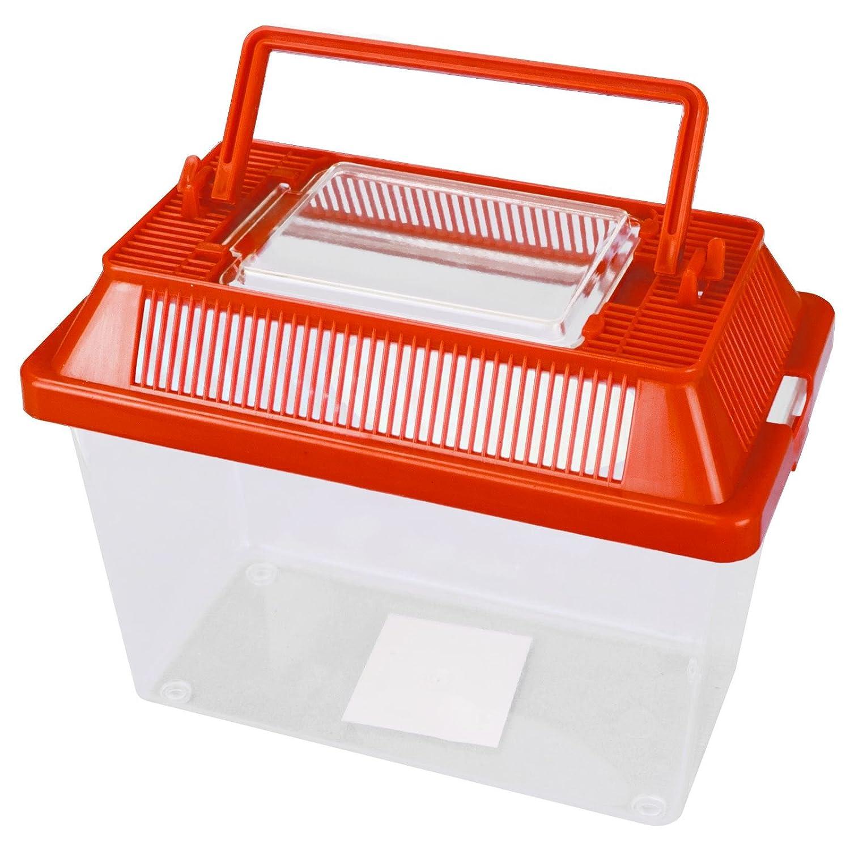 Terrario, contenitore per piccoli animali in plastica trasparente con coperchio apribile ventilato e maniglia per il trasporto, per insetti, ragni, rettili, cibo vivo Sabar