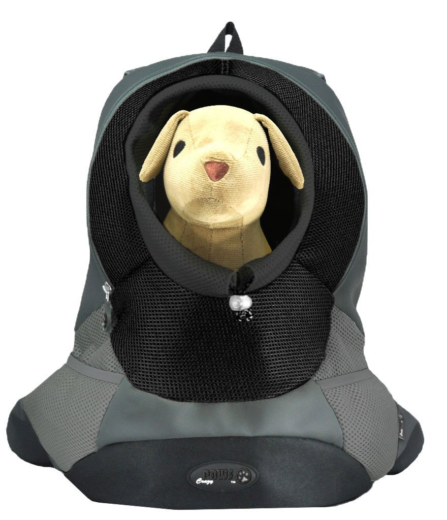 Black SmallWacky Paws Pet Backpack, Small, Sea Breeze