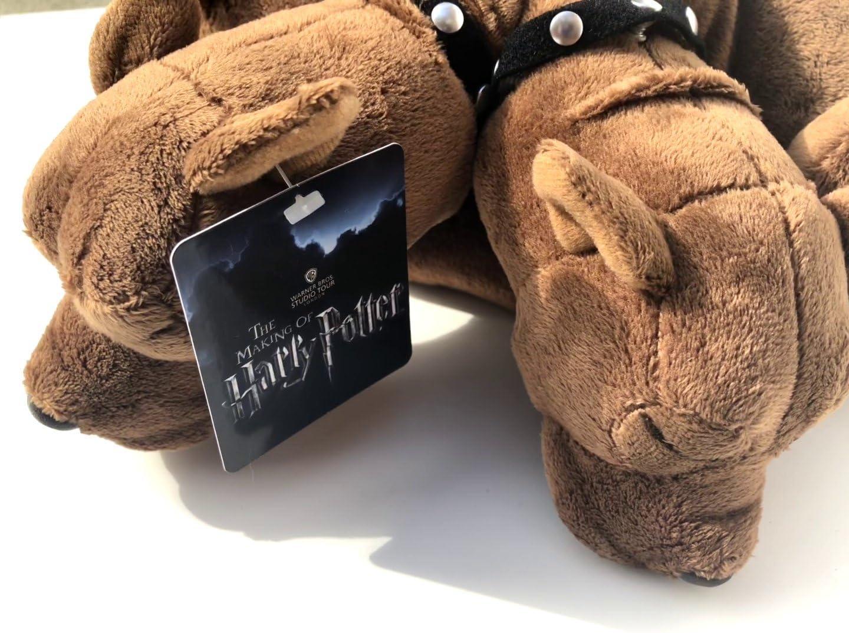 harry potter dog stuff