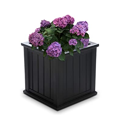 "Mayne 4838-B Cape Cod Polyethylene Planter, 20"" x 20"", Black : Garden & Outdoor"