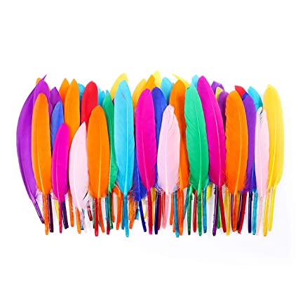 Amazon.com: Yardwe 200PCS Nature Feather Colorful Feather ...
