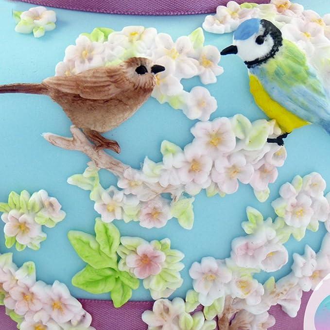 Amazon.com: 1 piece Bird Flower silicone fondant mold cake decorating tools Roses chocolate stencil moldes de silicona para reposteria T1018: Kitchen & ...