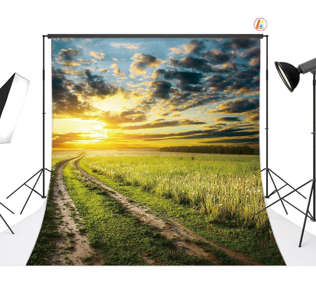LB 8 X 8ftファームトラックビニール写真バックドロップカスタマイズ写真背景Studio Prop db130   B00TIFNFX2