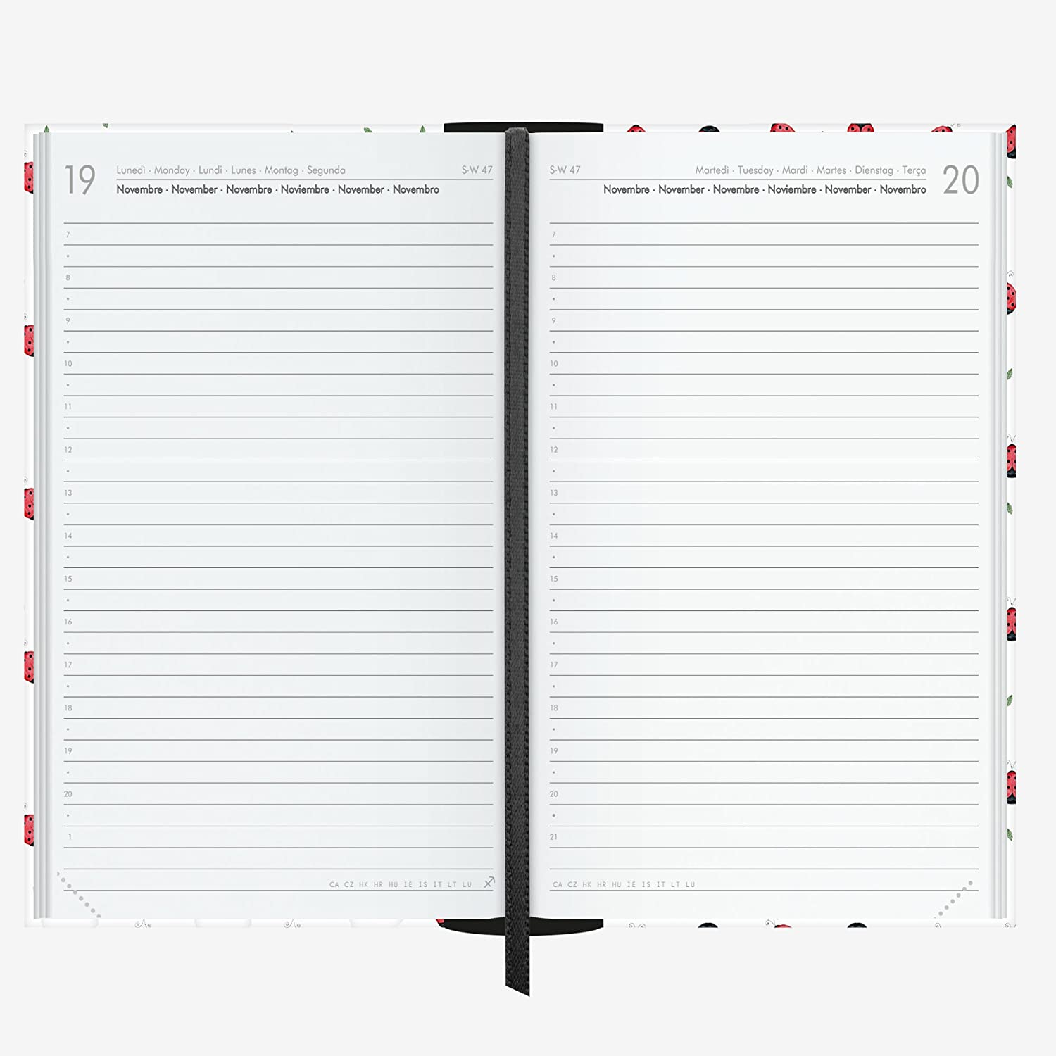 Amazon.com : Links ag160327 Weekly Agenda 16 Months, 480 ...