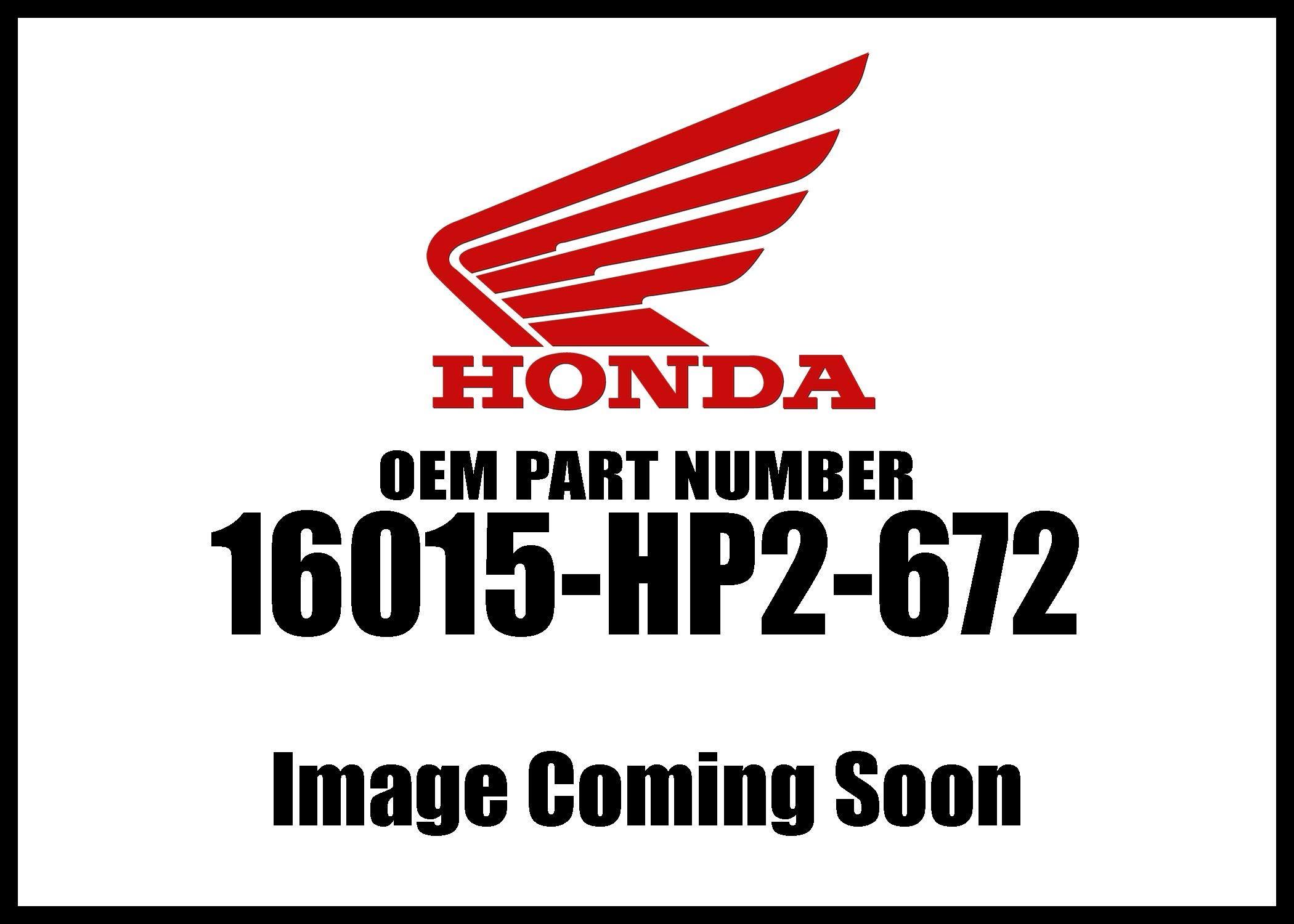 Honda 2006-2018 TRX Float Chamber Set 16015-HP2-672 New OEM