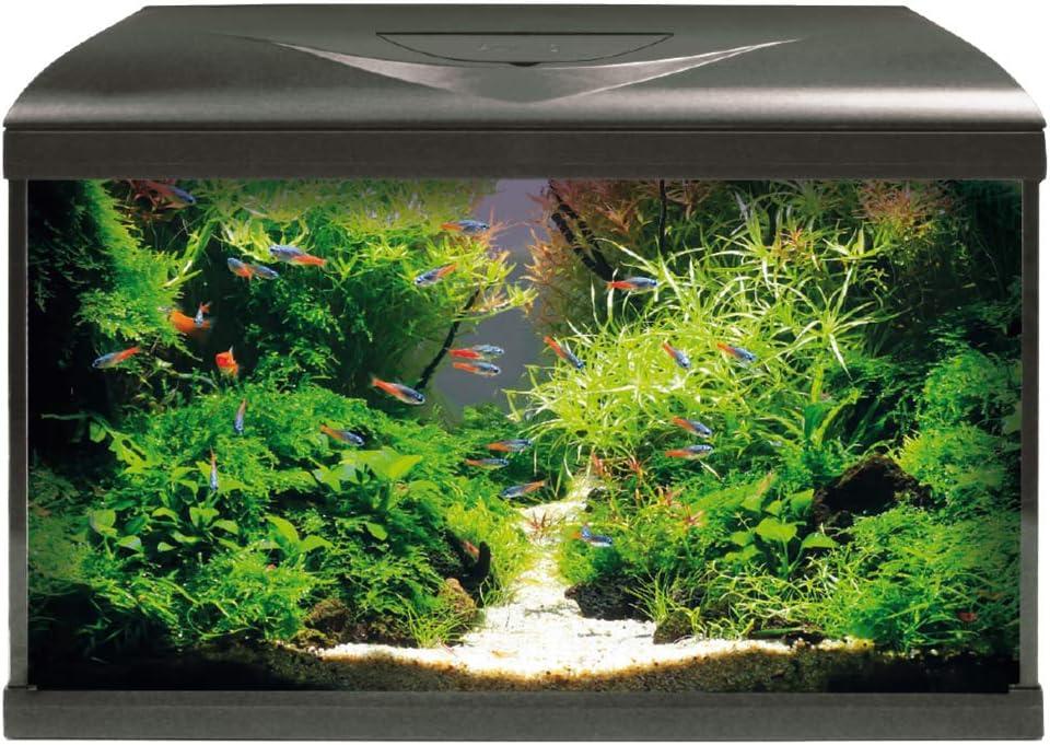 Acquario completo di illuminazione led, filtro e riscaldatore amtra system 60 led black A2001038