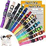 GAMUDA Puppy Collars – Super Soft Nylon Whelping Puppy ID - Adjustable Breakaway Litter Collars Pups – Assorted Colors…