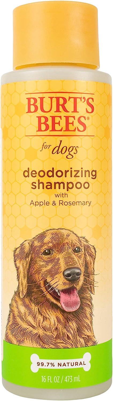 Pet Shampoos : Burt's Bees for Dogs All Natural Deodorizing Dog Shampoo