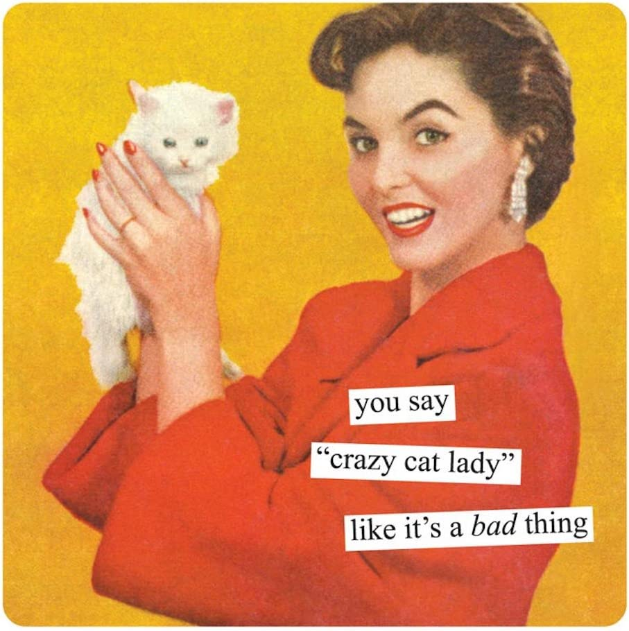 Anne Taintor Square Magnet, You Say Crazy Cat Lady Like It's A Bad Thing