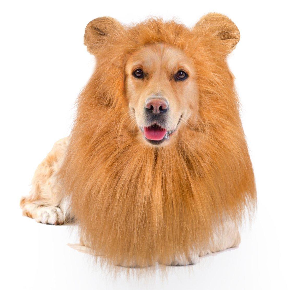 ISHOW Lion Mane for Dog, Funny Dog Costume for Medium Large Dog