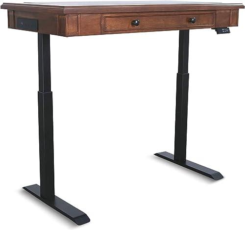 AITERMINAL Electric Standing Desk Dual Motor 49.2 x 25.6 Inch Adjustable Height Desk