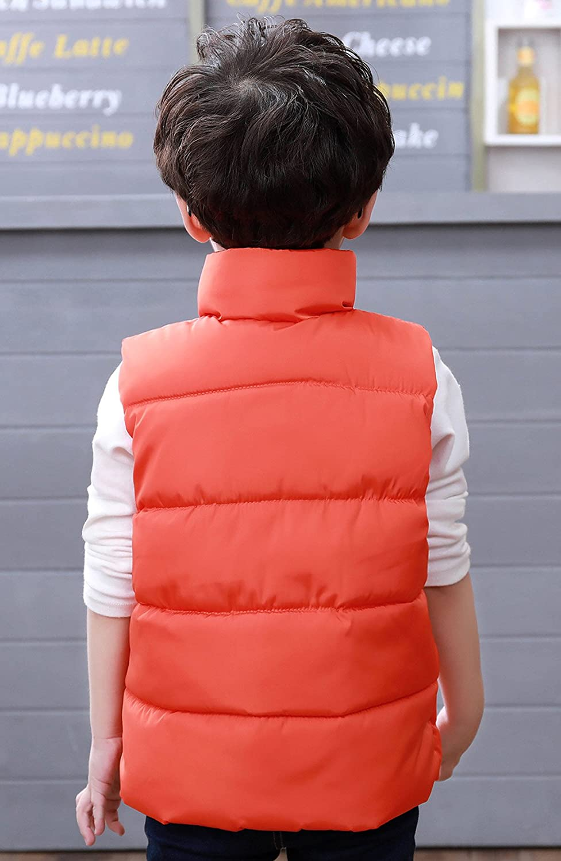 Dongzhiyue Kids Puffer Down Vest Quilted Vest Lightweight Windproff High Neck Warm Outwear