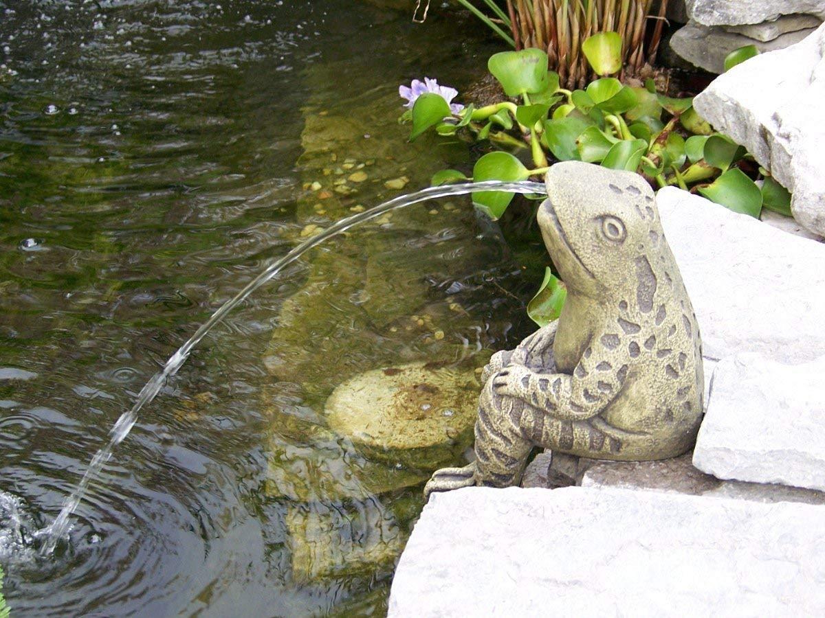 Sitting Frog Pond Spitter -stone statue/sculpture-water garden accent- Great Garden Gift Idea! by Massarelli's